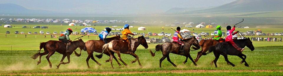 Naadam Pferderennen